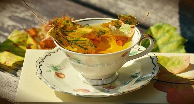 soplíky, Ochorenia jesenného obdobia, jeseň je tu